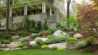 Hillside with rugged stone path: spring