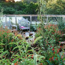 Traditional Landscape by Casey Boyter Gardens