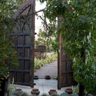 Contemporary back garden in Los Angeles with a garden path.