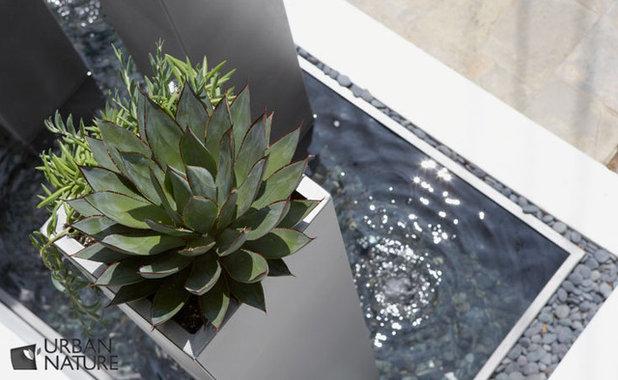 Модернизм Сад by Troy Silva Design Group Inc.