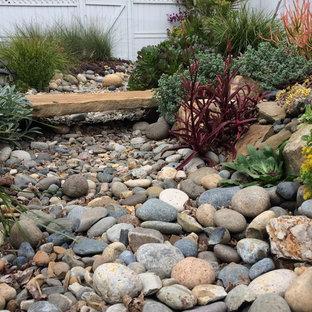 Mid-sized mediterranean backyard partial sun xeriscape in San Luis Obispo with a garden path and gravel for spring.