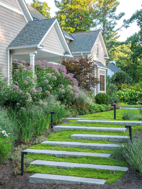 Inspiration For A Traditional Full Sun Front Yard Landscaping In DC Metro.
