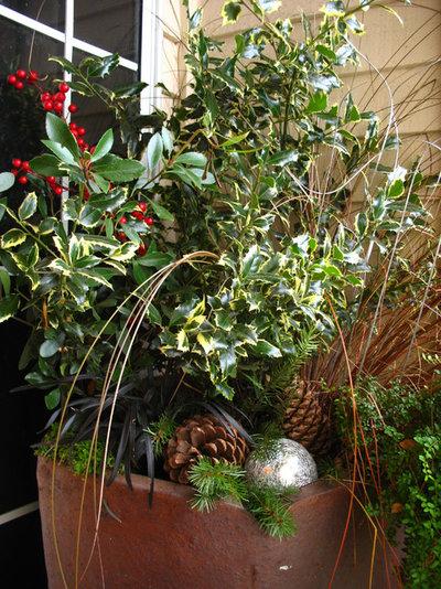 Conseils de pro pour cultiver le houx et l 39 int grer for Jardinet en anglais
