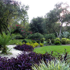 Traditional Landscape by Designer Landscape
