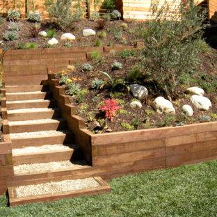 ロサンゼルスの大きいコンテンポラリースタイルのおしゃれな裏庭 (ゼリスケープ、庭への小道、日向、砂利舗装) の写真