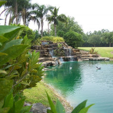 Tropical Landscape by orlando comas, landscape architect.