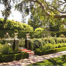 Semi Formal Gardens