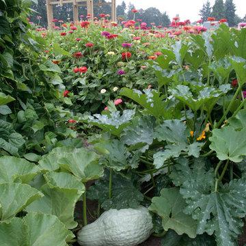 Home Farm and Garden