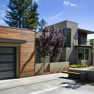 Design ideas for a contemporary front garden in San Francisco.