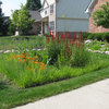 How to Shape a Rain Garden and Create the Right Soil for It