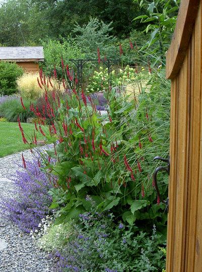 Contemporary Landscape by Bliss Garden Design, LLC