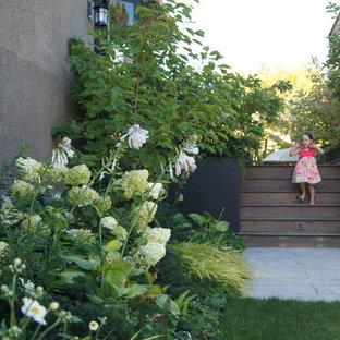 Ispirazione per un giardino stile americano sul tetto