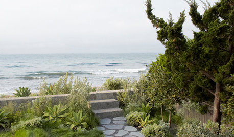 USA Houzz: Surf's Up for a Transformed Cape Cod-Style House