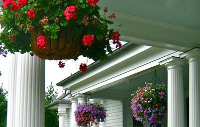 Get the Hang of Hanging Flower Baskets