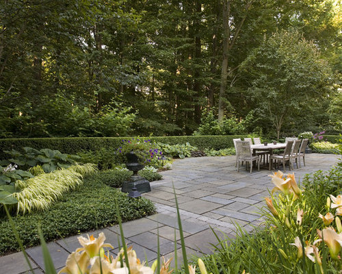 Best sunny border garden design ideas remodel pictures for Sunny landscape designs