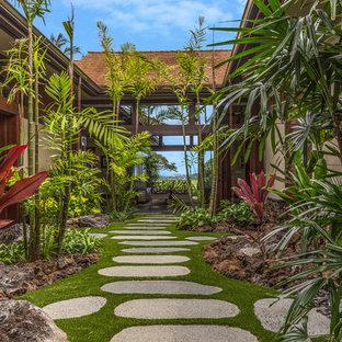 Photo of a tropical garden path in San Francisco.