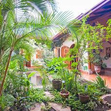 Tropical Landscape by Louise Lakier