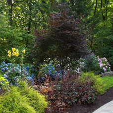 Modern Landscape by Smalls Landscaping