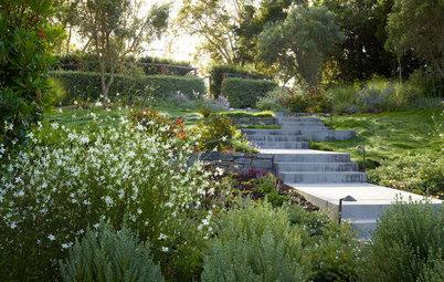 5 Ideas for a More Earth-Friendly Garden