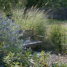 Contemporary Landscape by Benjamin Vogt / Monarch Gardens