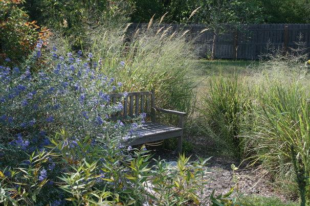 Contemporary Landscape by Benjamin Vogt / Monarch Gardens