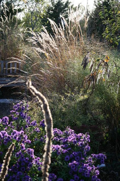 Landscape by Benjamin Vogt / Monarch Gardens