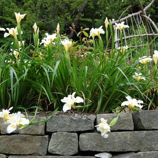 Design ideas for a landscaping in Seattle.