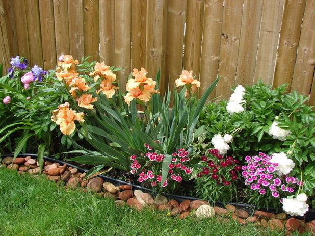 10 fleurs et l gumes planter au mois de juillet. Black Bedroom Furniture Sets. Home Design Ideas
