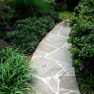 Kleiner, Halbschattiger Klassischer Vorgarten mit Gartenweg und Natursteinplatten in Washington, D.C.