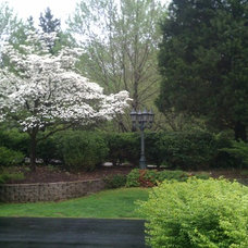 Traditional Landscape by Maloney Homes
