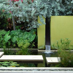 Idée de décoration pour un jardin design avec un point d'eau.