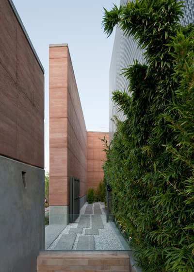 Contemporary Garden by Assemblage Studio