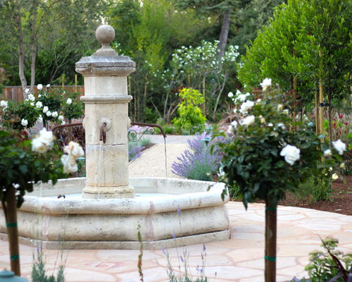 Design Ideas For A Mediterranean Landscaping In San Francisco.