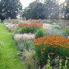 Visite Privée : Jakobstuin, le jardin enchanteur de Jaap De Vries