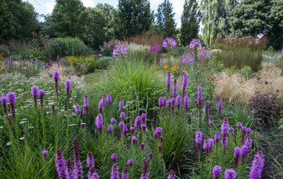 Garden Tour: A Dutch Masterpiece Brings Year-Round Enchantment