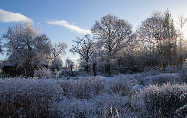 Disfruta de las 4 estaciones en este fascinante jardín en holanda