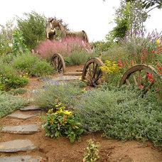 Southwestern Landscape by Gates & Croft Horticultural Design