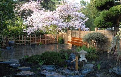 Gartenstile kurz erklärt: Der japanische Garten