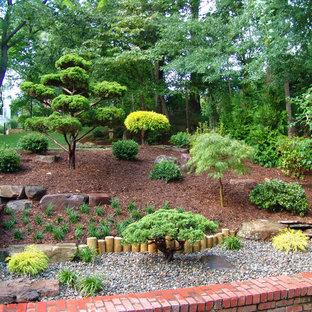 Cette image montre un jardin asiatique avec une pente, une colline ou un talus.