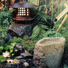 Asian Landscape by Modern Zen Garden