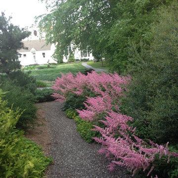 Japanese Garden: pea stone walk and gardens