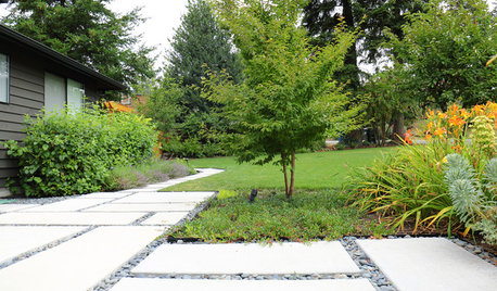 10 Trees Landscape Designers Love