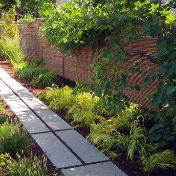 Japanese-style backyard garden