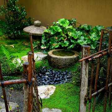 japanese water basin and bamboo fence