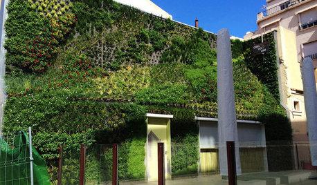 Fachadas verdes: Así va a cambiar el paisaje de nuestras ciudades