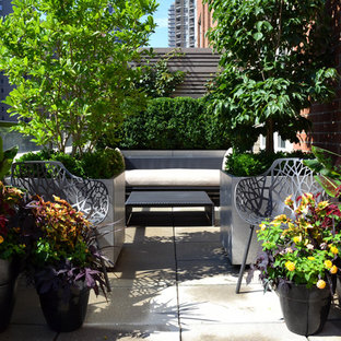 Design ideas for a small traditional garden in New York with a container garden.