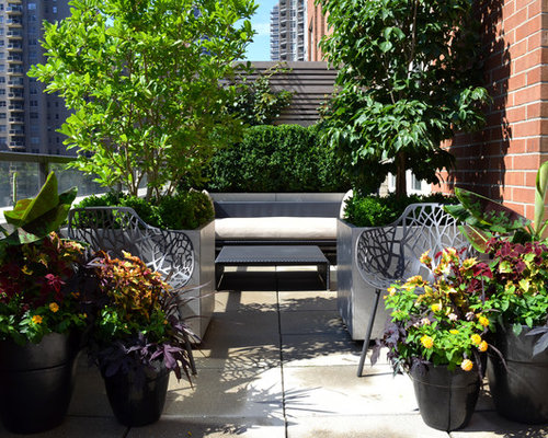 Balcony garden houzz for Home garden design houzz