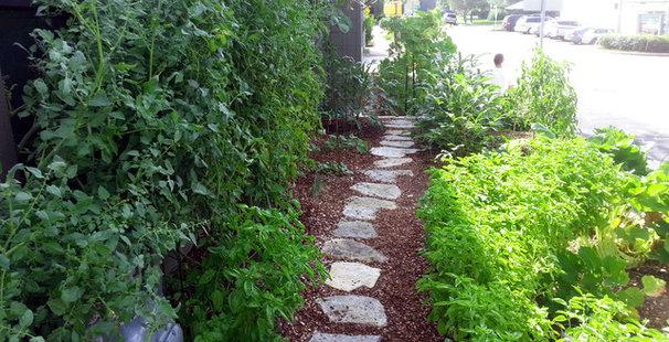 Landscape by Seedlings Gardening