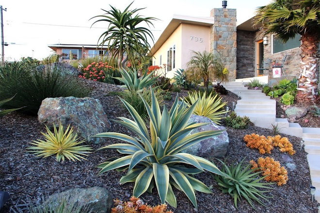 Contemporary Landscape by Gardens by Gabriel, Inc.