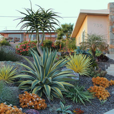 Contemporary Landscape by Gardens by Gabriel